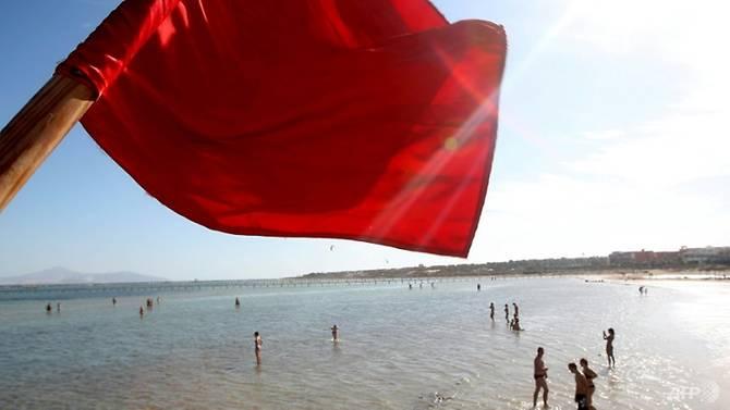 Shark kills Czech tourist swimming in waters off Egypt