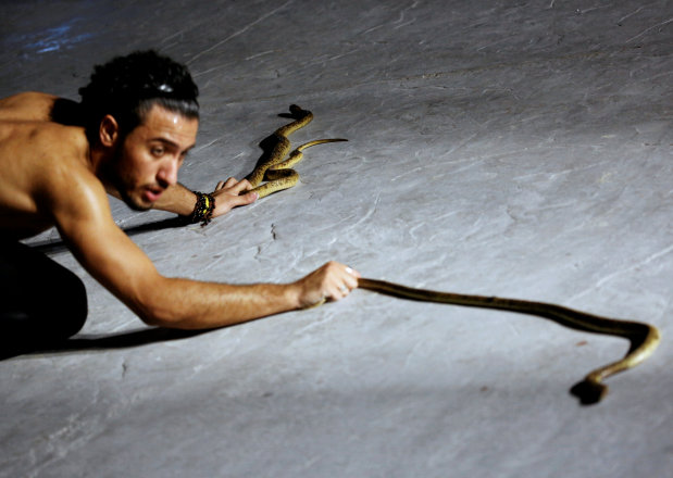 OMG: PICTURES: Egyptian in Red Sea resort town charms snakes to sleep