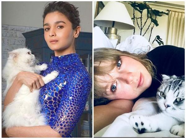 International Cat Day: Celebs who love their felines