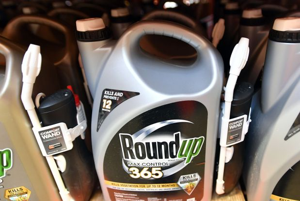 US jury orders Monsanto to pay $290 million  to cancer patient over weed killer