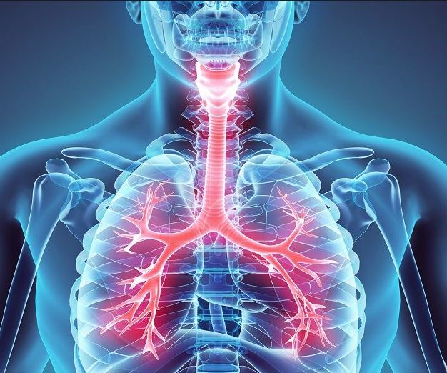 Inhaled steroids may increase risk of lung infections