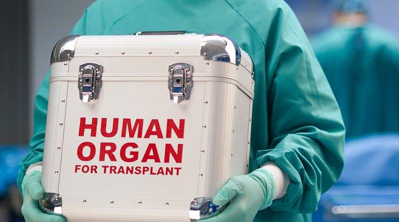 Oman regulates organ transfer and transplant