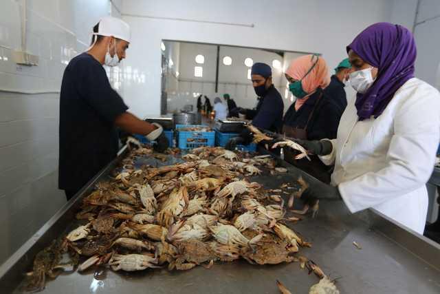 Tunisia fishermen turn tide to cash in on blue crab menace