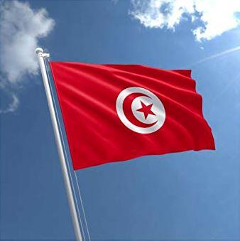 Tunisian fighter jet crashes into sea, pilot unharmed