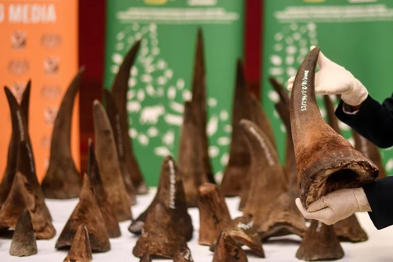 China postpones lifting of ban on trade of tiger and rhino parts