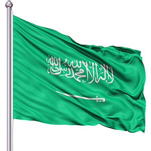 Saudi Arabia rejects US Senate stance
