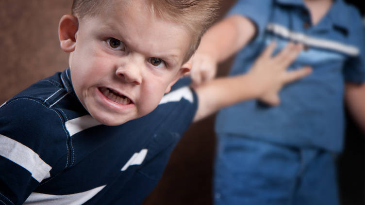 Here's how physical aggression in children develops as they age
