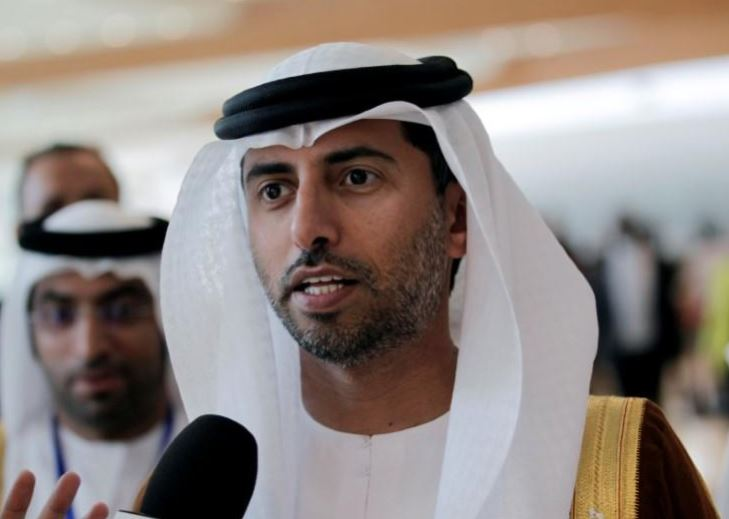 UAE energy minister says nuclear power project slightly delayed