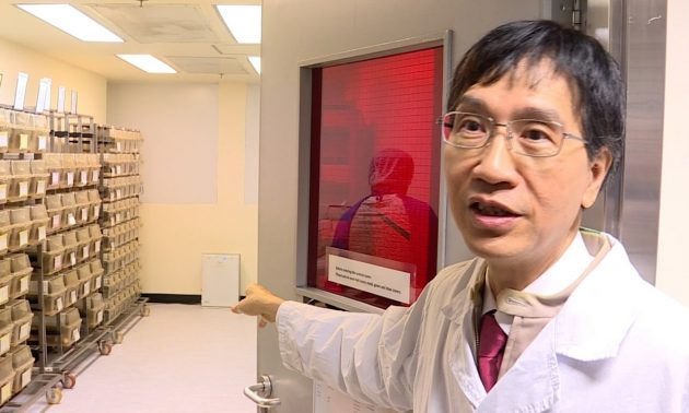 Hong Kong scientists claim 'broad-spectrum' antiviral breakthrough