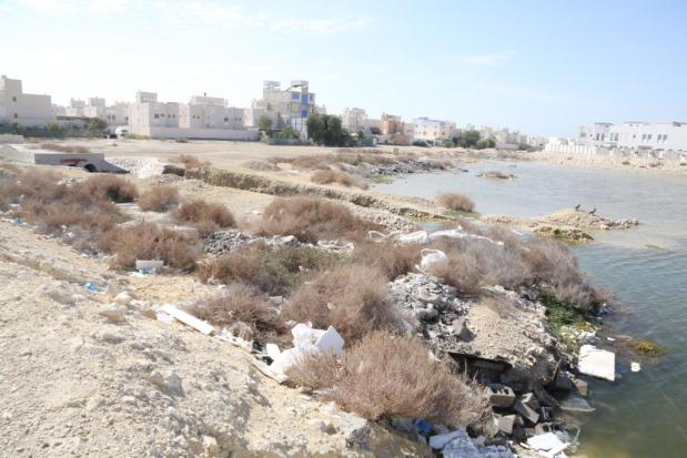 Stagnant water making life miserable for residents