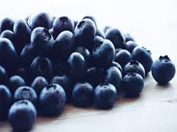STUDY: Blueberry consumption good for heart