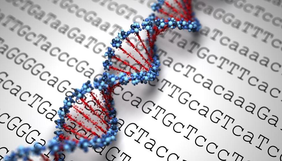 Gene testing firm gets 25-year ban in $42.6 million kickback settlement