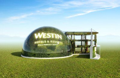 Discover a haven of wellbeing with Westin Hotels