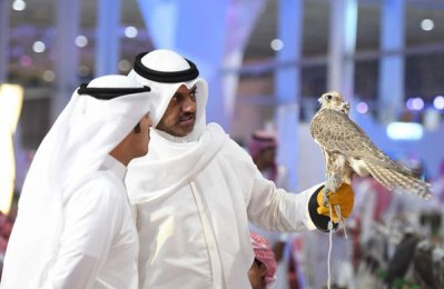 Over 70,000 visitors attend first day of Saudi falcon exhibition