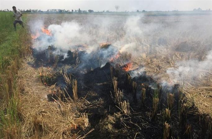 Fields of fire drive Delhi's air quality to unhealthy levels