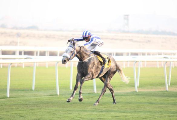 Triple treat for race horse owner Mansoori