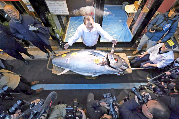 Tuna sells for $1.8m in first 2020 Tokyo auction