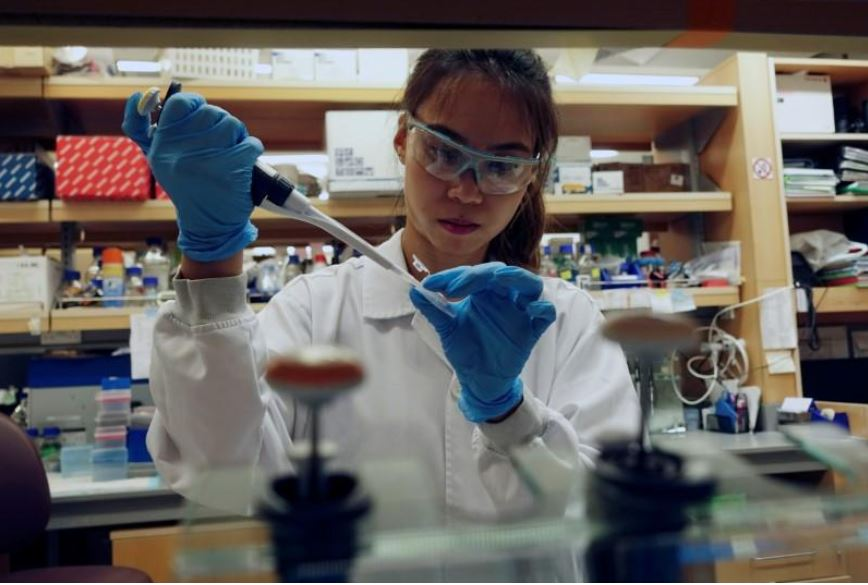 Singapore scientists study genes to fast-track coronavirus vaccine