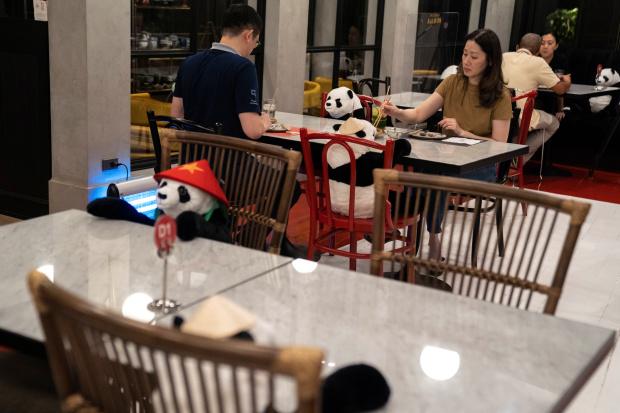 Panda dolls kick pandemic blues for Thai diners