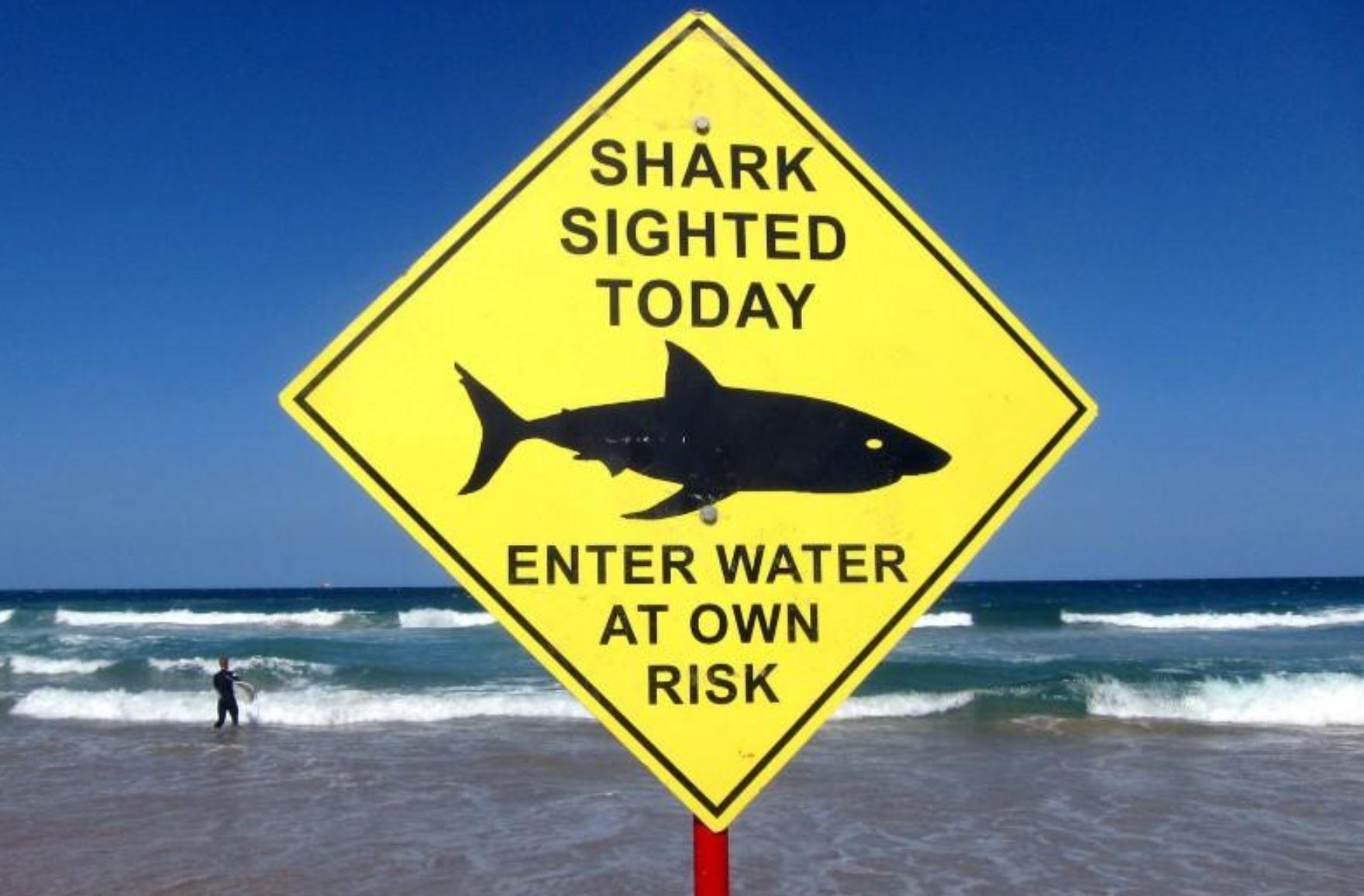 Teen killed in suspected shark attack off Australian coast, says police