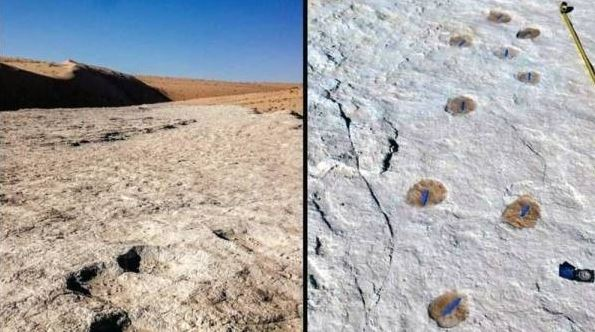 120,000-year-old footprints discovered