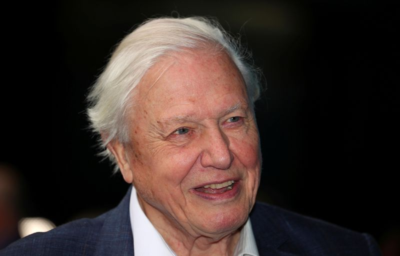 David Attenborough leads call for world to invest $500 billion a year to protect nature