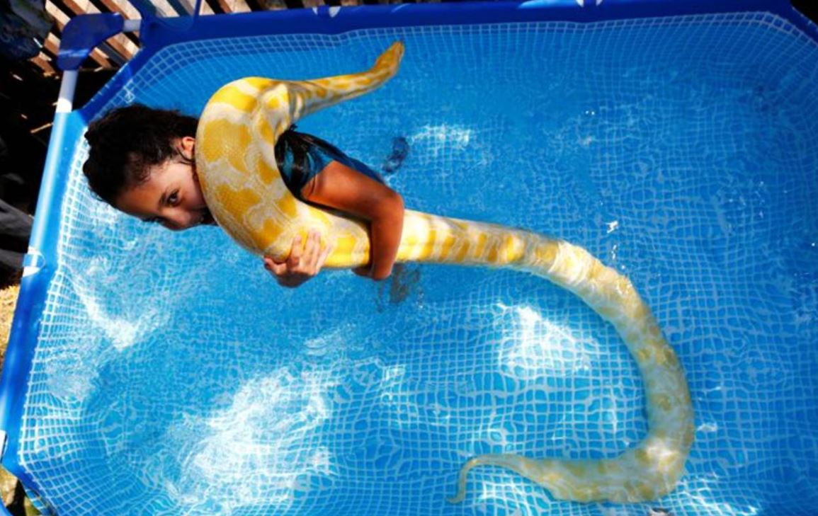 WATCH: Israeli girl makes a splash with her pet snake